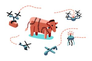 Internet Cow