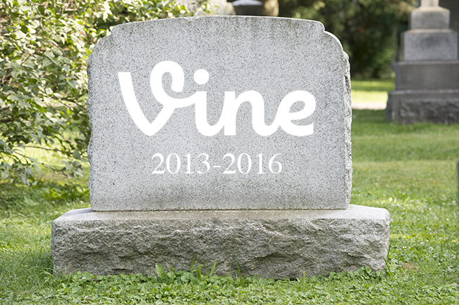 rip-vine-hed-2016